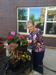 planting-gardens-lilydale1