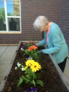 Planting Gardens Lilydale2 ...