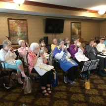 Woodbury Lutheran Kitchen Band plays for Lilydale Senior Living