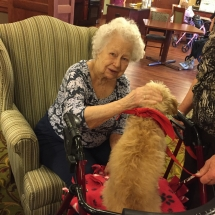 Pet Therapy-Lilydale Senior Living-Dog is camera shy