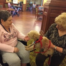Pet Therapy-Lilydale Senior Living-Saying hi to the tenants